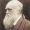Why Darwin?