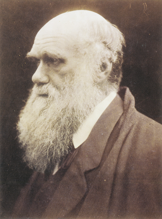 Charles Darwin, 1868–1869; photograph by Julia Margaret Cameron