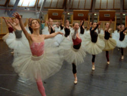 A scene from La Danse: The Paris Opera Ballet, 2009