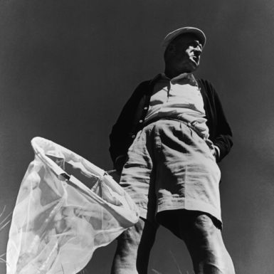 Vladimir Nabokov, Montreux, Switzerland, 1966; photograph by Philippe Halsman