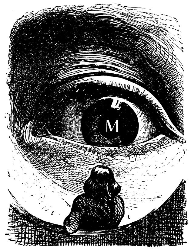 Judt illustration July 15, 2010.png