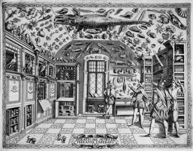 Sixteenth-century cabinet of curiosities belonging to Ferrante Imperato, an apothecary in Naples; from the frontispiece of the 1672 edition of his Historia Naturale