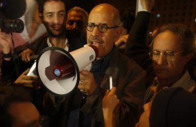 Mohamed ElBaradei addresses the crowd in Tahrir Square, Cairo, January 30, 2011