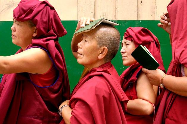 Tibetan Buddhist nuns.jpg
