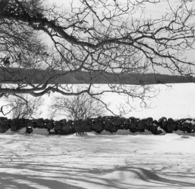 My Wall in Snow, Chilmark, Massachusetts, 15 February 2003