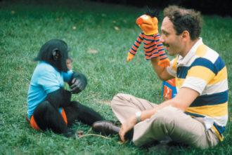 Herbert Terrace with Nim Chimpsky, 1970s