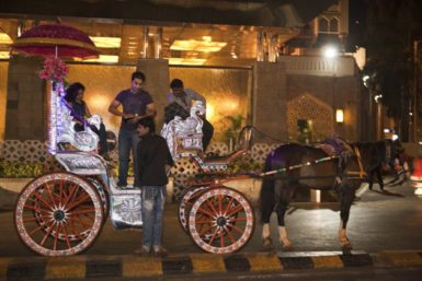 A horse and cart outside the Taj Hotel, Mumbai, India, 2010