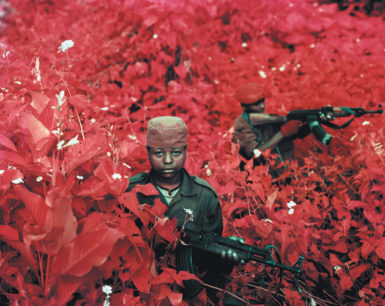 Young rebels from the Alliance of Patriots for a Free and Sovereign Congo—whose fighters, according to UNHCR, are told to spray themselves with 'magic water to protect themselves from bullets'—Lukweti, Masisi Territory, North Kivu, 2011. The photograph is titled Vintage Violence and appears in Infra, Richard Mosse's book of infrared images of eastern Congo. The book includes an essay by Adam Hochschild and has just been published by Aperture and the Pulitzer Center on Crisis Reporting.
