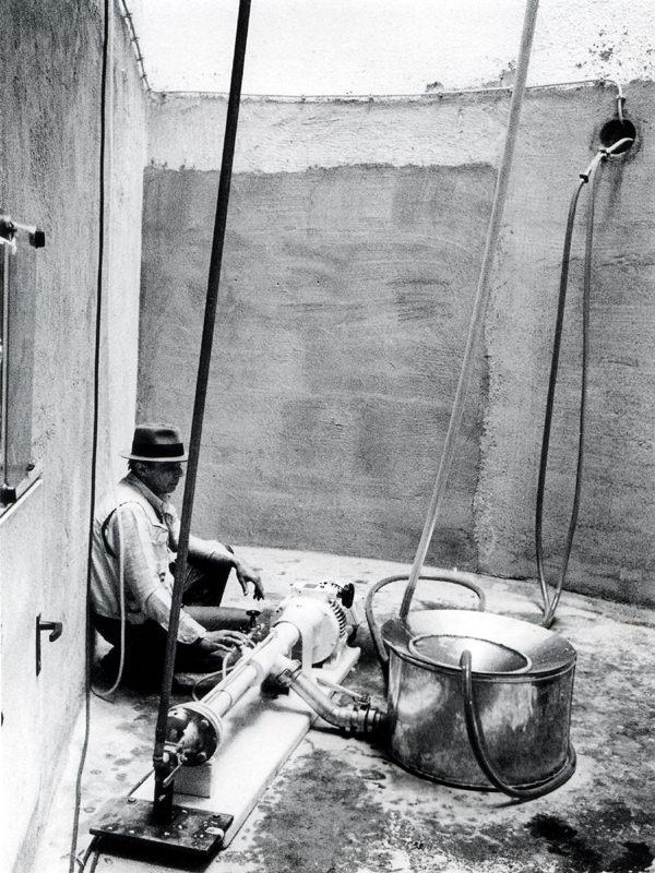 Beuys: Honey Pump.jpg