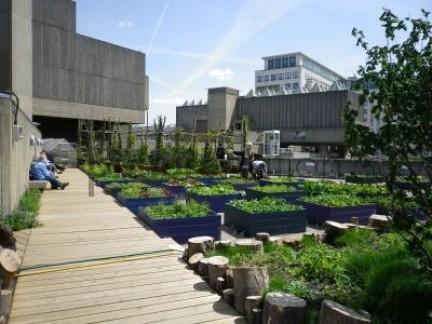 Queen Elizabeth Hall Roof Garden | Calendar | The New York Review of ...