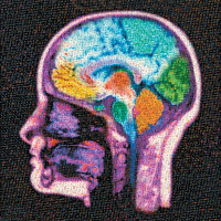 A digital mosaic of the brain, using images from X-rays, CT sans, and MRI scans