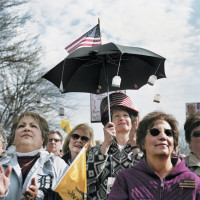 A Tea Party rally in Clinton Township, Michigan, April 2010