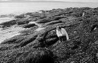 Rachel Carson, Southport, Maine, 1962