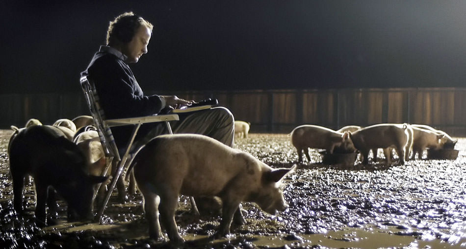 Upstream Color pigs.jpg