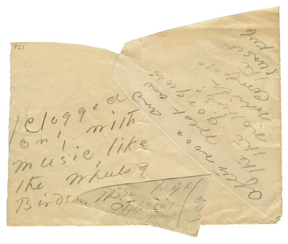 Benfey-Dickinson Envelope.png