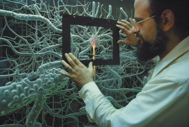A model showing the functioning of human brain cells, Washington, D.C.
