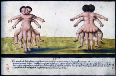 Monstrous Birth from The Book of Miracles