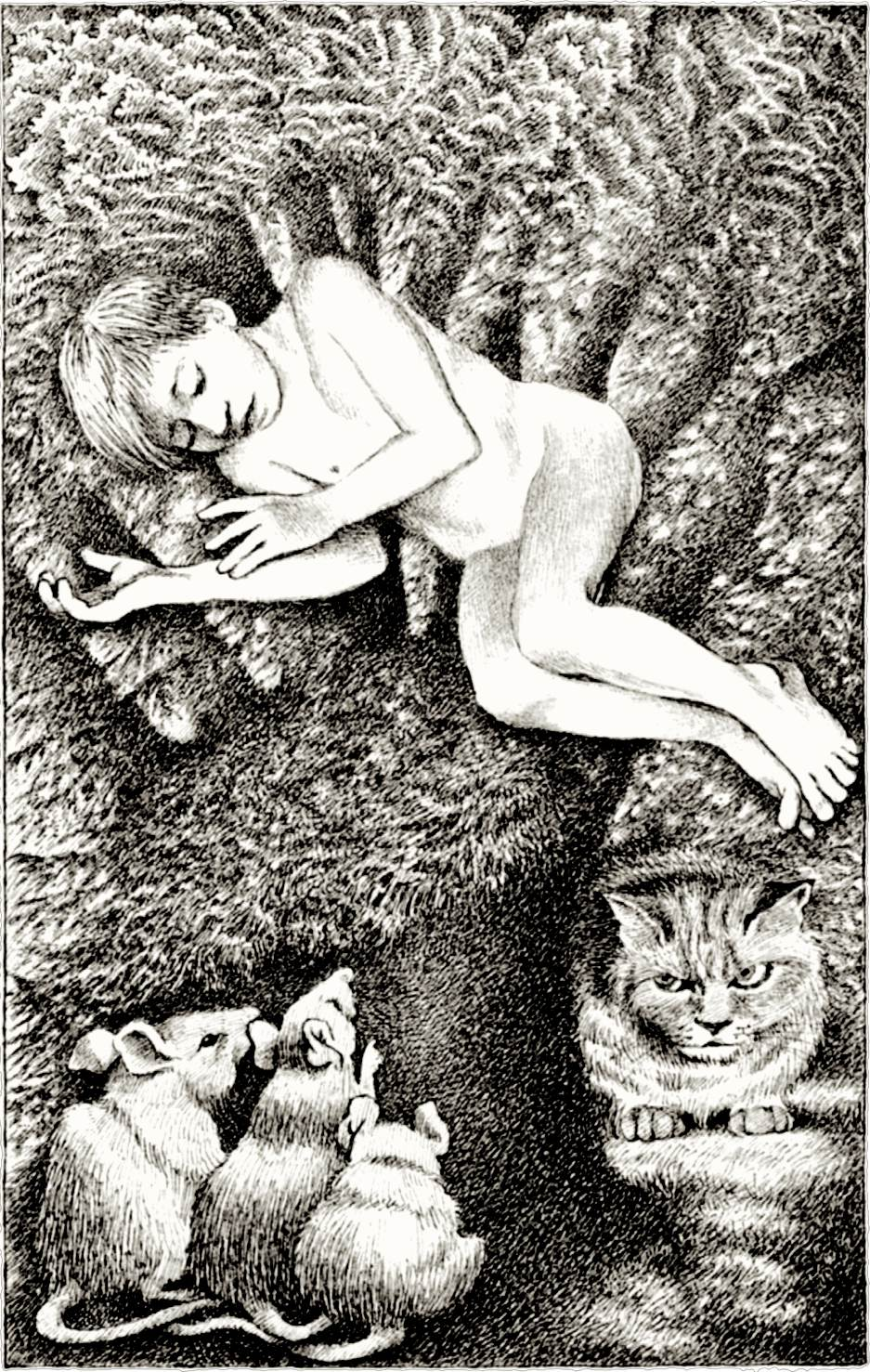 Maurice Sendak: Boy, Cat and Rats.jpg