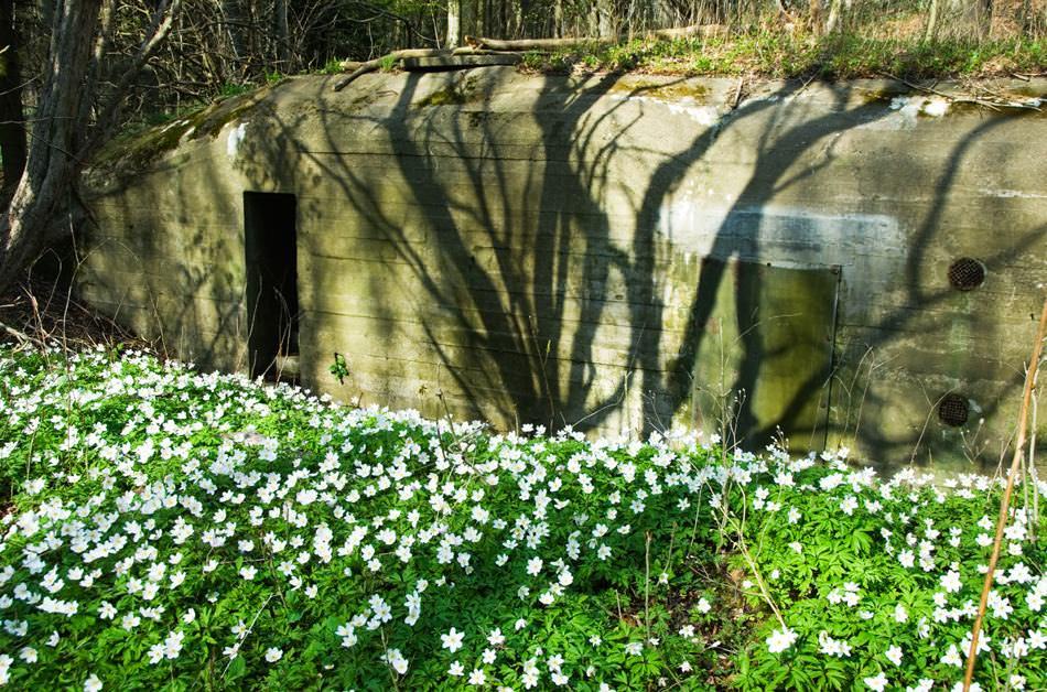 Ianthe Ruthven: Frederikshavn Bunker.jpg