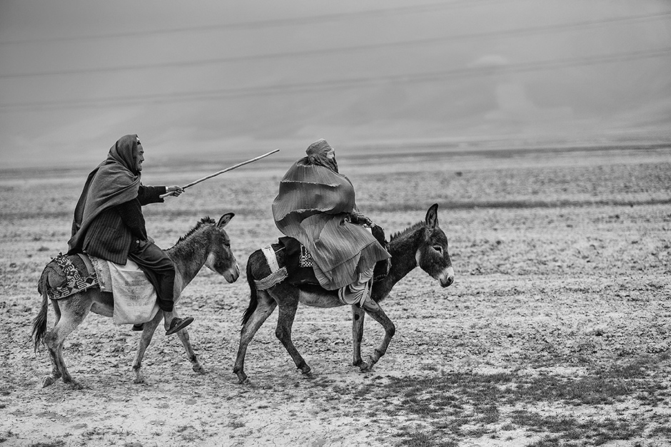 A man taking his wife to the doctor from their village in Balkh province, northern Afghanistan, March 2010; photograph by Majid Saeedi from his book Life in War, just published by FotoEvidence