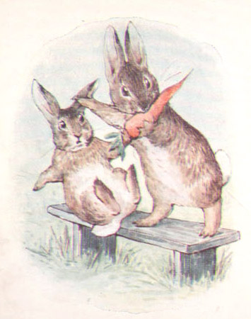 fierce bad rabbit.jpg
