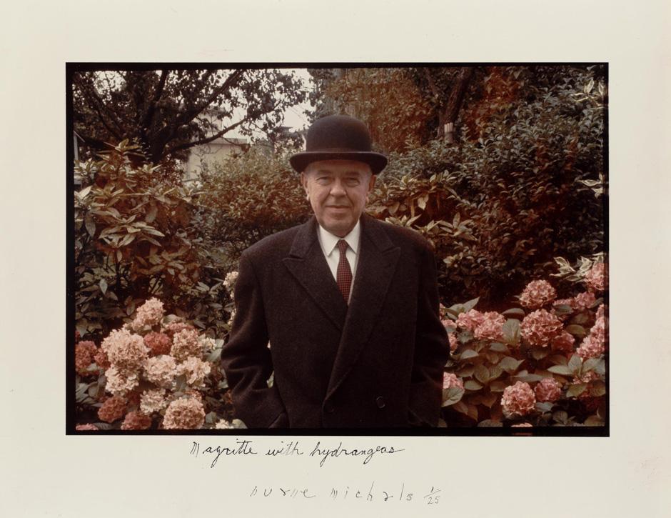 Magritte hydrangeas.jpg