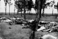 Victims of the Armenian Genocide in an Armenian area of Anatolia, 1915