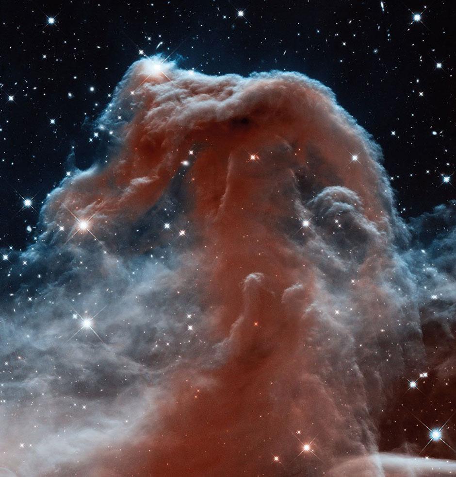 horsehead nebula.jpg