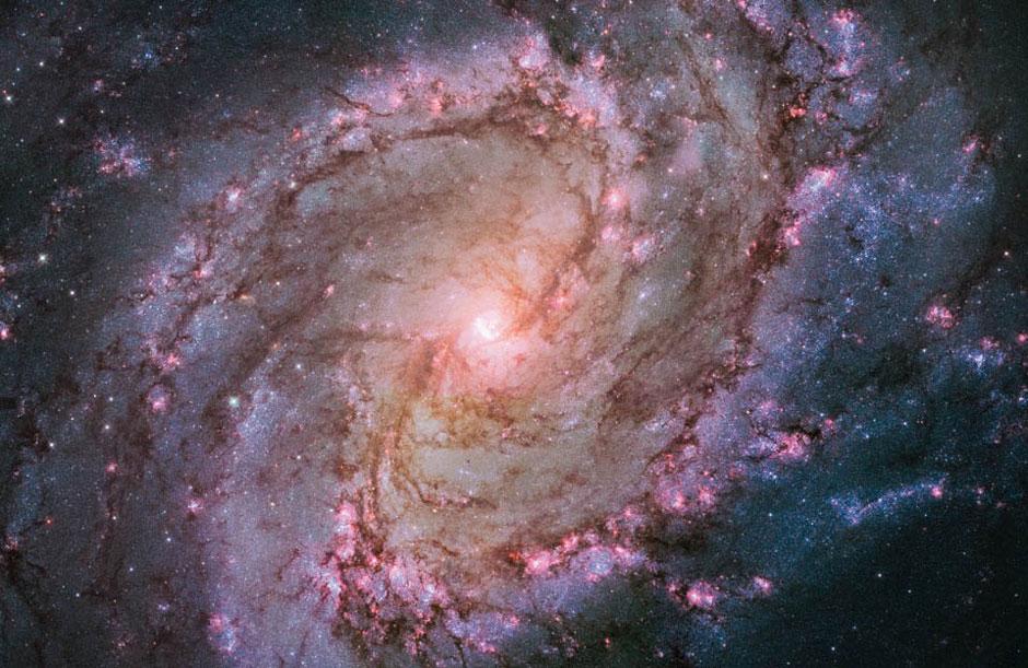 southern pinwheel galaxy.jpg