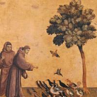 Giotto di Bondone: <em>Saint Francis Preaching to the Birds</em>, circa 1295-1300