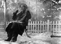 Kurosawa's Japan Revisited