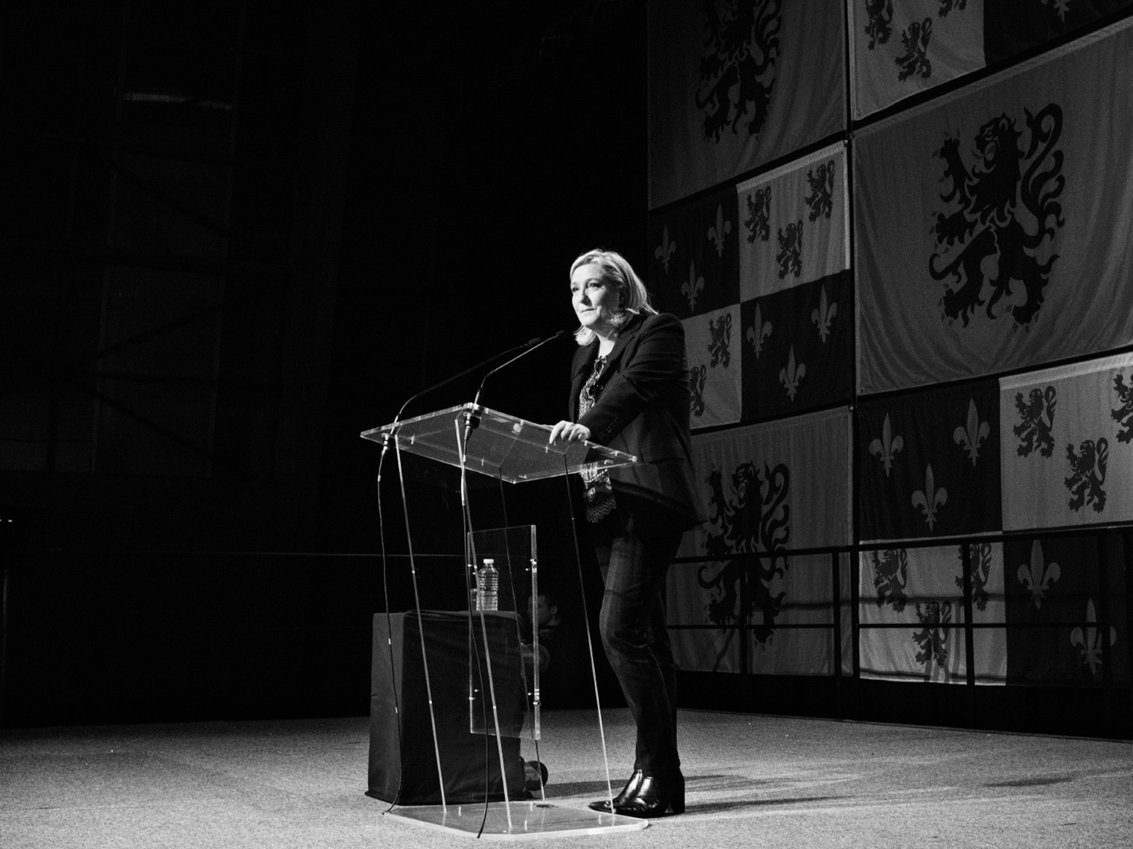 Marine Le Pen speaking to supporters at the end of the second round of regional elections, Hénin-Beaumont, France, December 2015