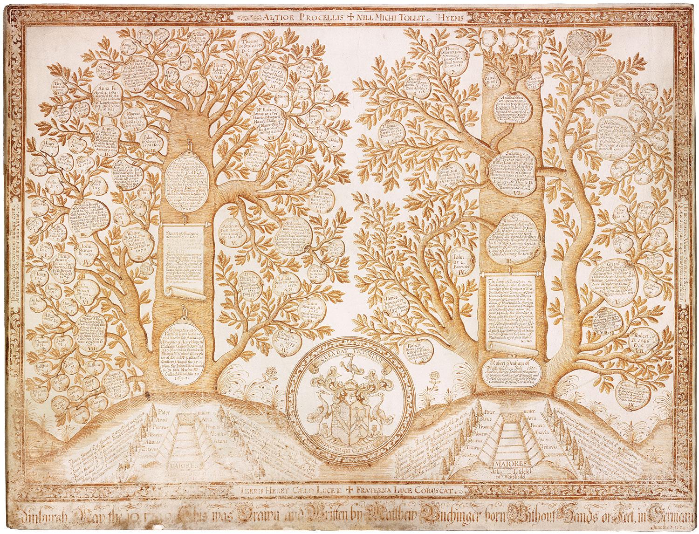 Stewart-Denham family tree by Matthias Buchinger, Edinburgh, May 10, 1729