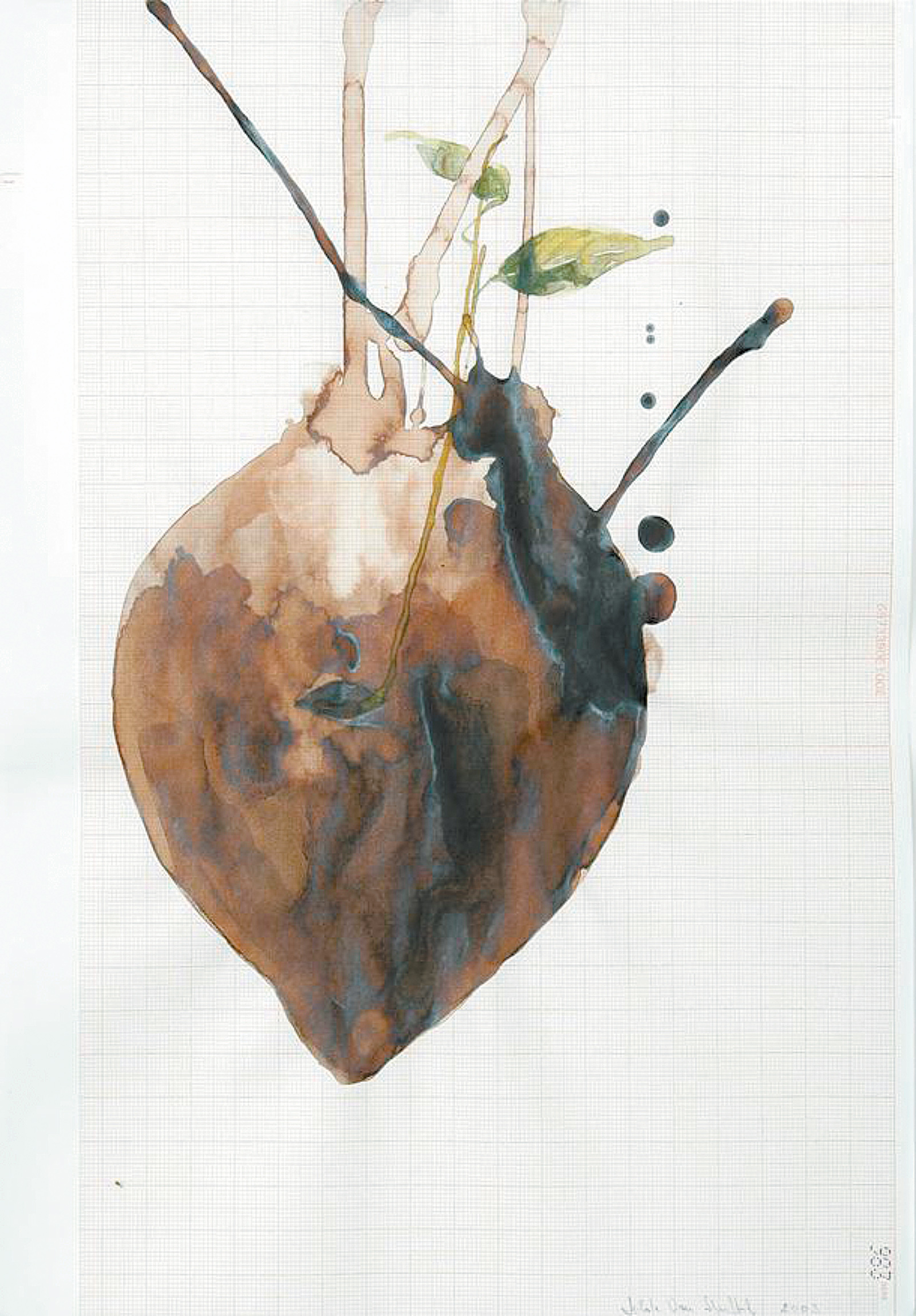 Hilde Van Huffel: Hart-en, 2005; from 'The Heart,' a 2007 exhibition at the Wellcome Collection, London