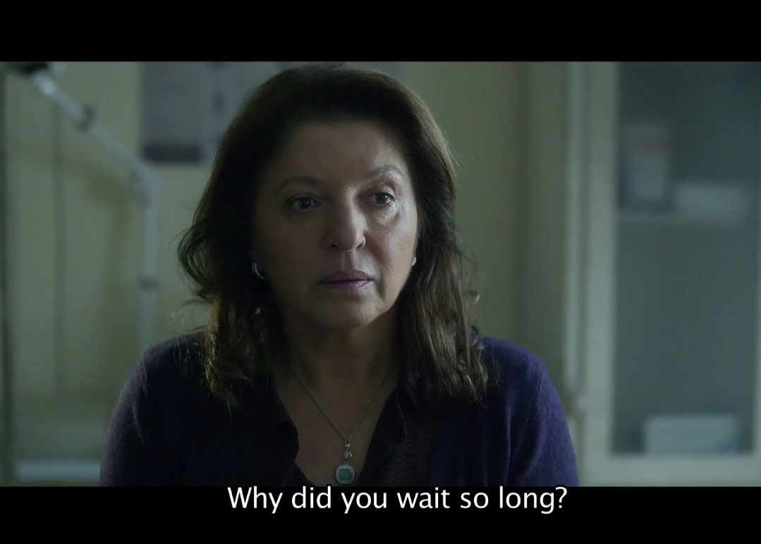 Mirjana Karanović in her film, A Good Wife, 2016