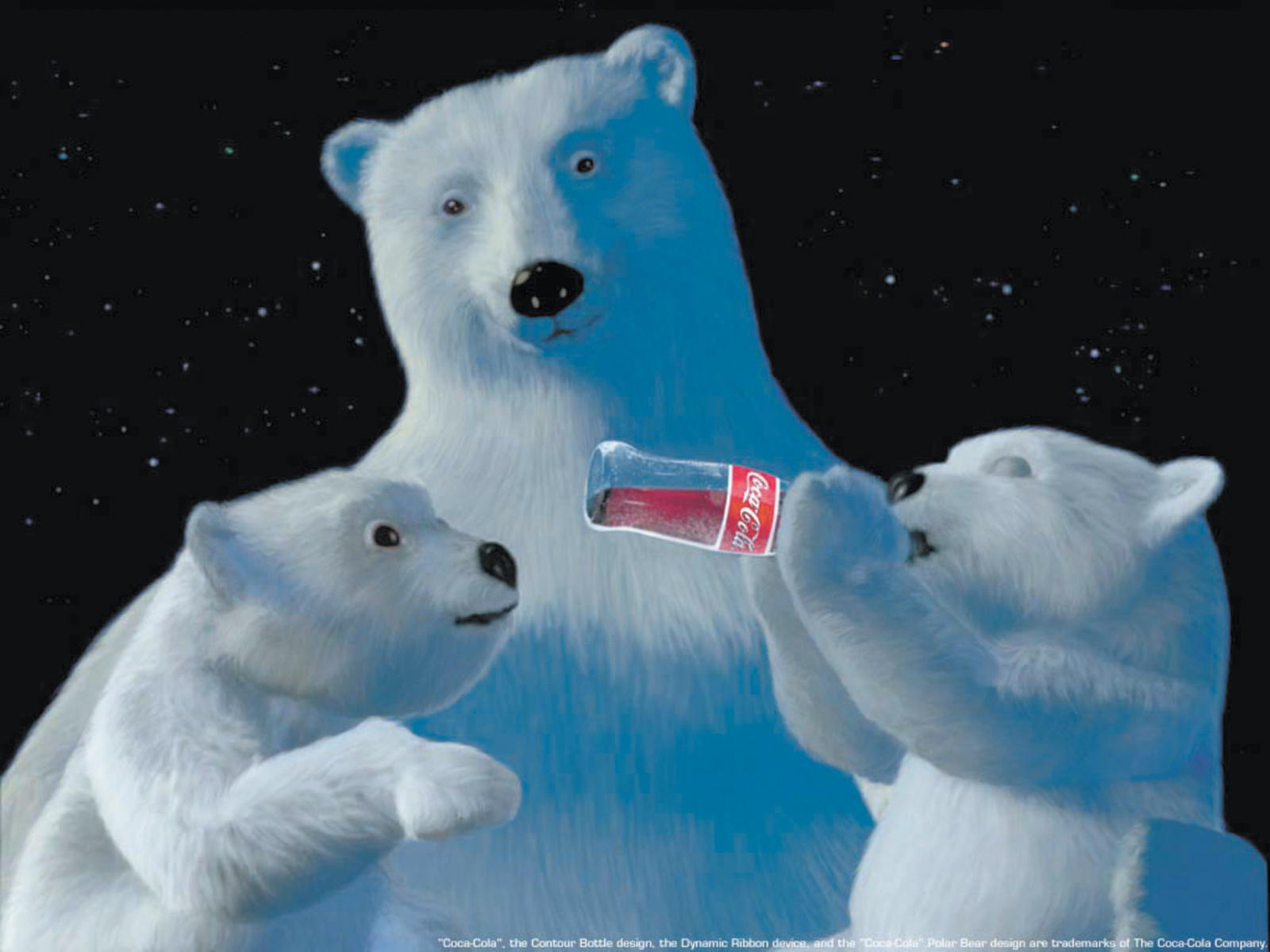 One of Coke's polar bear advertisements, the first of which appeared in 1922. 'As the real-life animal has become associated with global warming, melting glaciers, and drowning polar bear cubs,' Natalie Angier writes, 'Coca-Cola has modified its message to present itself as the bear's best friend and protector.'