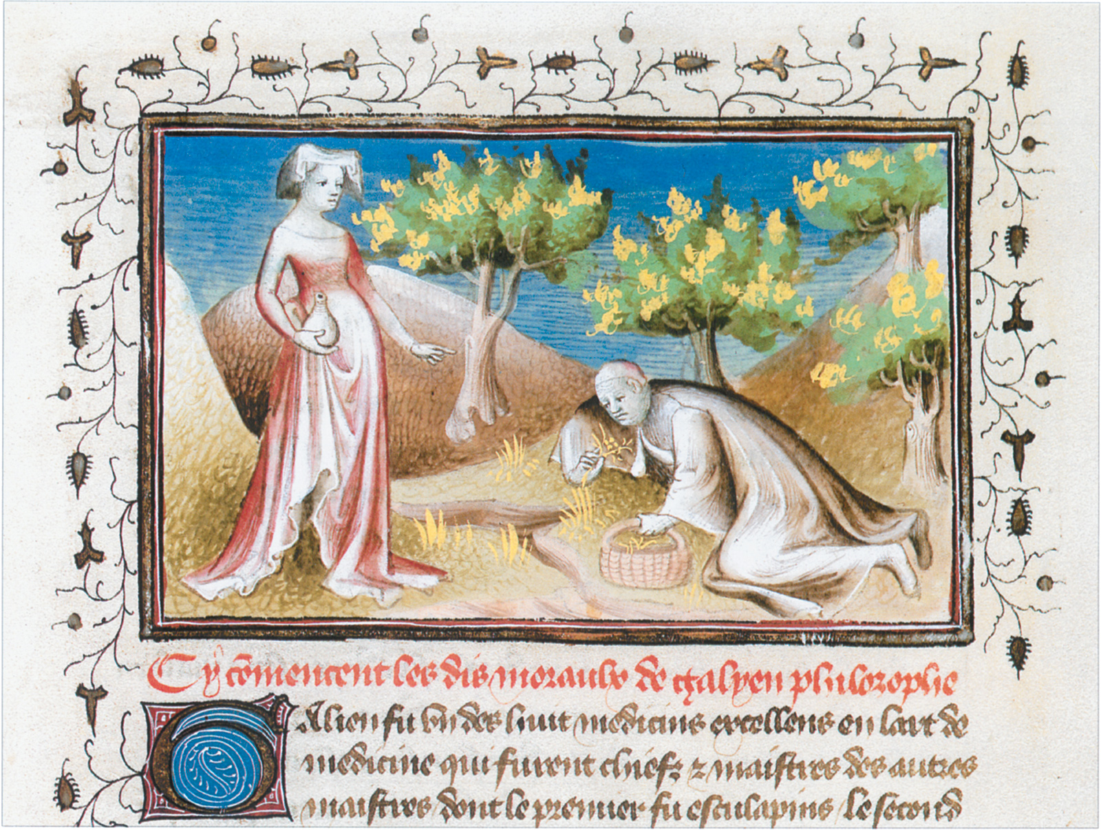 'Galen collecting medicinal plants'; from Guillaume de Tignonville's Les Dits Moraux des Philosophes, early fifteenth century