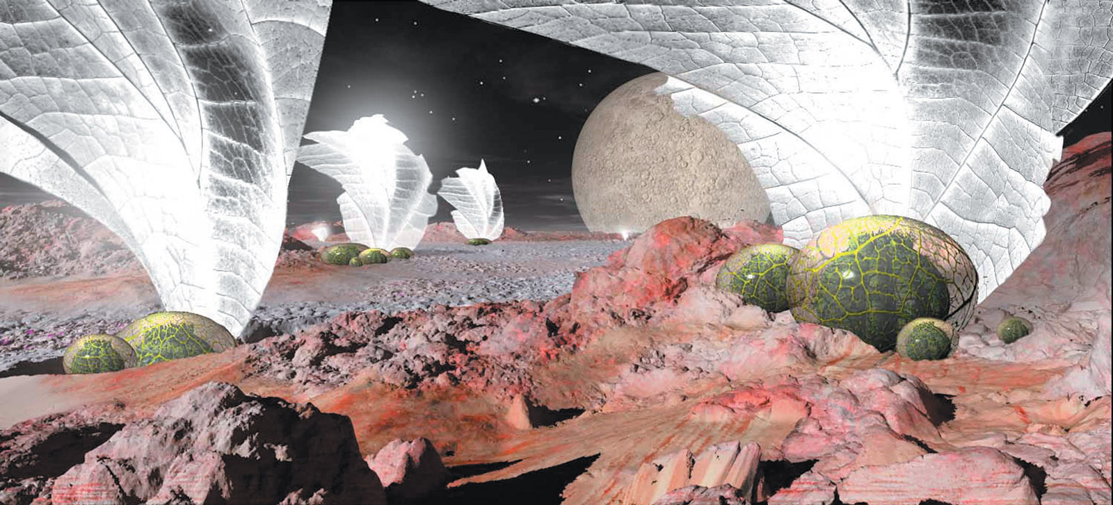 An illustration of Freeman Dyson's vision of 'Noah's Ark culture'—a space operation in which, 'sometime in the next few hundred years, biotechnology will have advanced to the point where we can design and breed entire ecologies of living creatures adapted to survive in remote places away from Earth.' Spacecraft resembling ostrich eggs will bring 'living seeds with genetic instructions' to planets, moons, and other 'suitable places where life could take root.' A new species of warm-blooded plants, 'kept warm by sunlight or starlight concentrated onto it by mirrors outside,' will enable the Noah's Ark communities to survive.