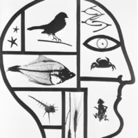 Virna Haffer: Inside the Mind of Man, circa 1935-1942