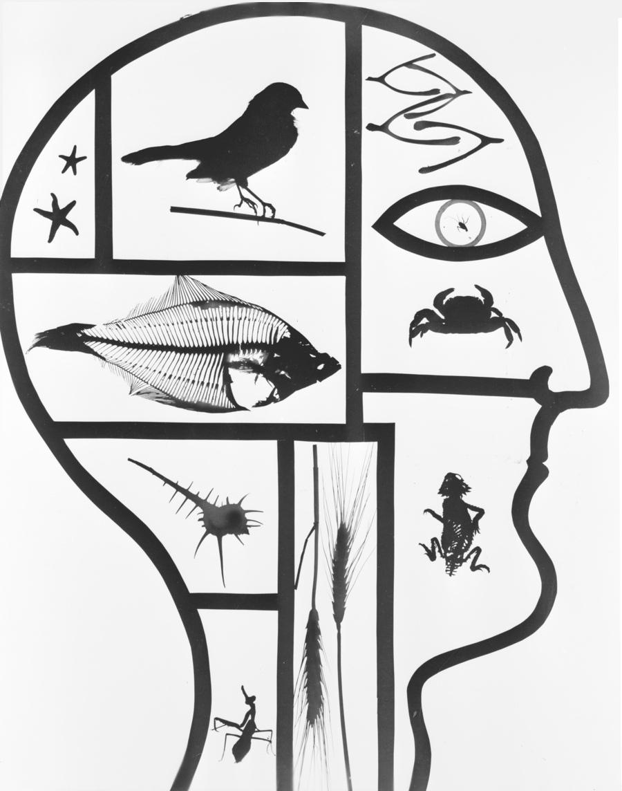 Virna Haffer: Inside the Mind of Man, circa 1935-1942