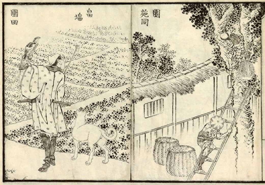 hokusai-traveler