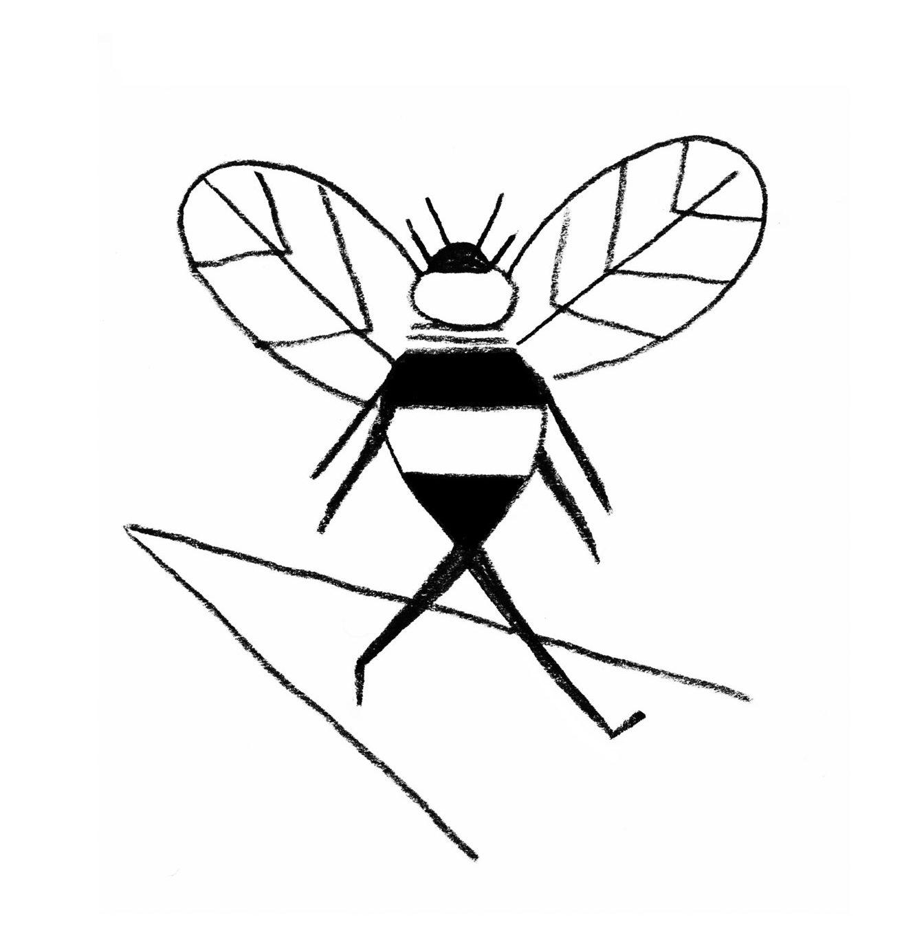 mcguire-bee