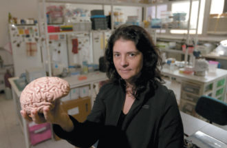 Suzana Herculano-Houzel, head of the Laboratory of Comparative Neuroanatomy at the Federal University of Rio de Janeiro, August 2015