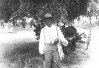 Washington Phillips, circa 1950
