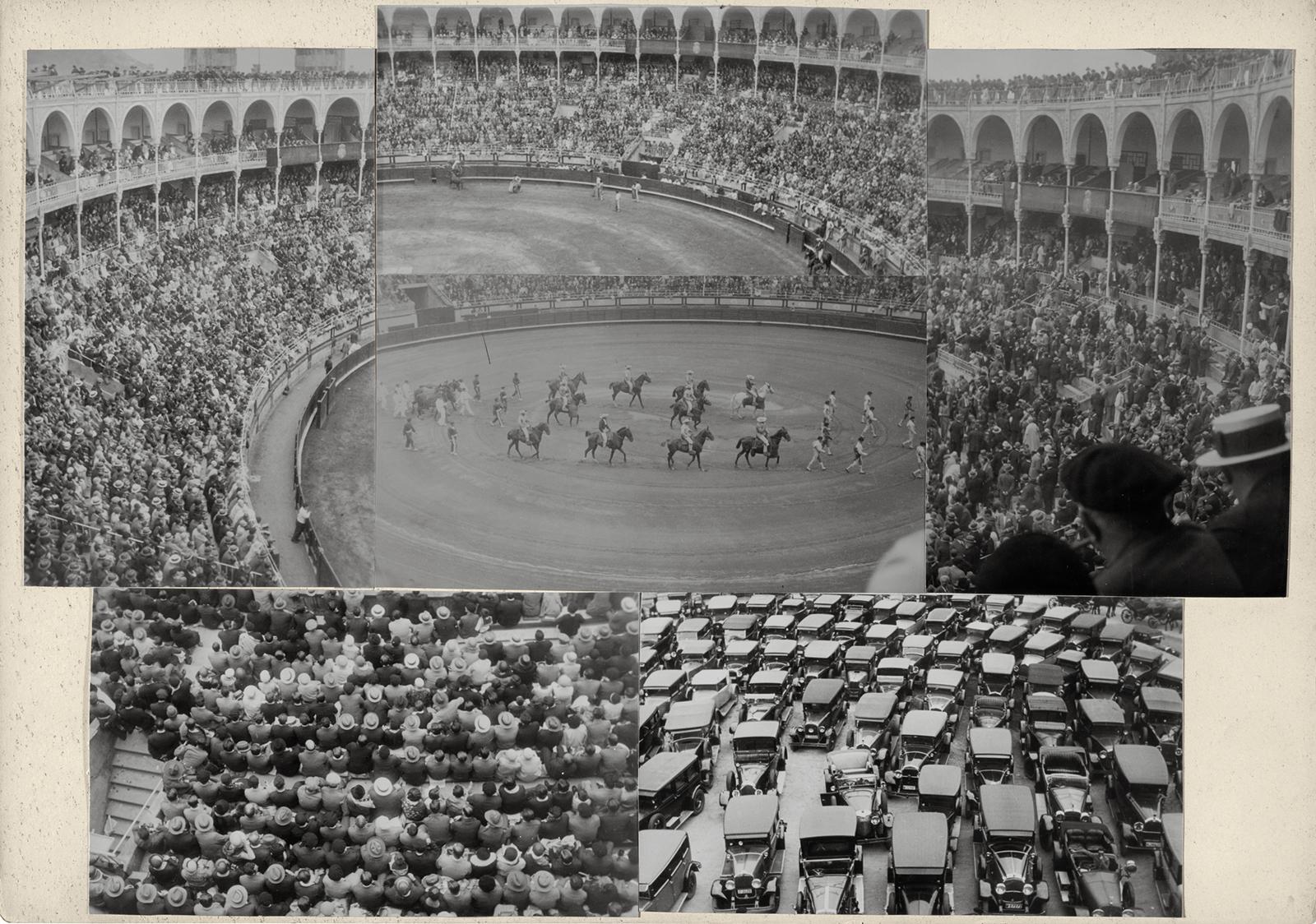 albers-bullfight