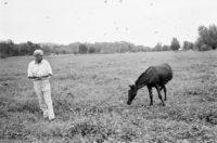 Robert Bresson and the donkey that starred in Au hazard Balthazar, 1966