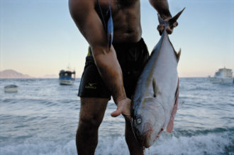 A fisherman and his catch, Sicily, 2004