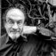 Rushdie's New York Bubble