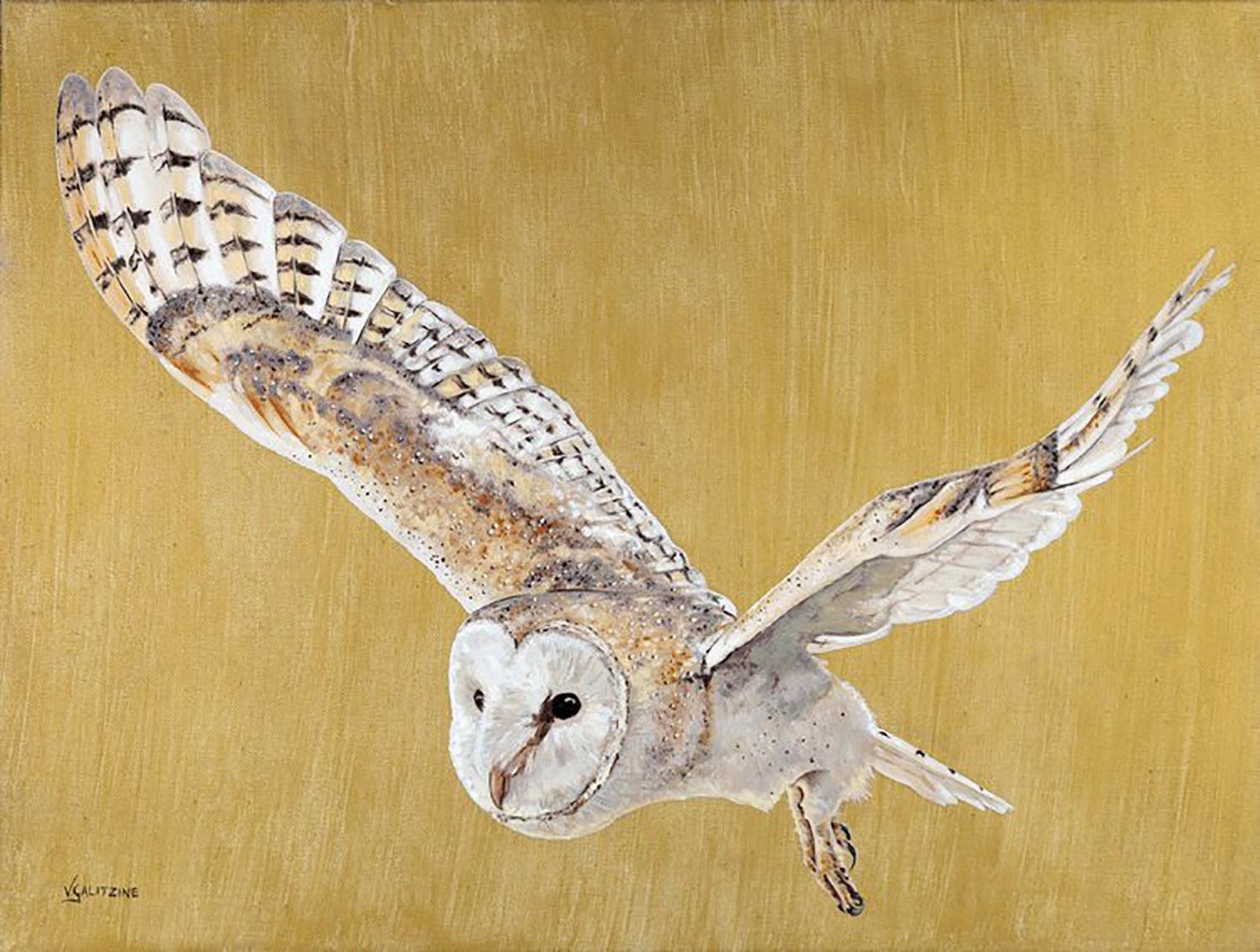 23.Owl+in+flight+Tori