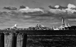 New York Harbor, August 2018